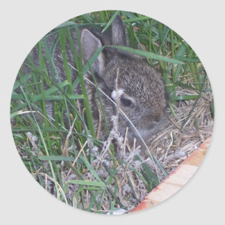 Find the Bunny Classic Round Sticker
