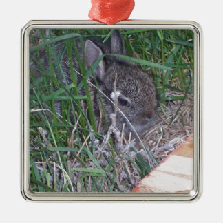 Find the Bunny Christmas Ornament