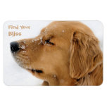 Find Your Bliss Golden Retriever Magnet at Zazzle