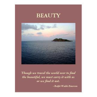Finding Beauty Vertical Postcard