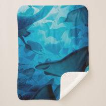 Finding Dory | Hide and Seek - Rays Sherpa Blanket