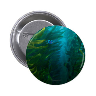 Finding Dory   Hide and Seek - Sea Kelp Button