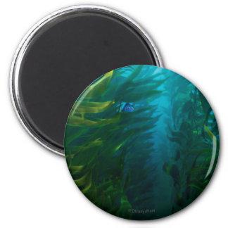 Finding Dory | Hide and Seek - Sea Kelp Magnet