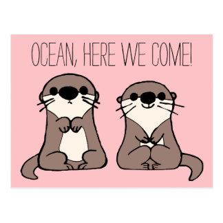 Finding Dory   Otter Cartoon Postcard