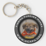 Finding Forever Homes Key Chains