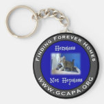 Finding Forever Homes Keychains