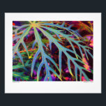 "Finding the Colors Photo Print<br><div class=""desc"">This colorful Photo Print is an original photograph of a leaf on a coral plant, sometimes called coral palm. In the closeup photo, other leaves and other plants can be seen behind the main leaf. The colors found are soft tropical pastels, blues, aquas, lavenders, pinks, yellows and greens. The intricate...</div>"