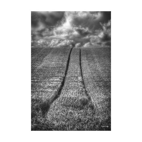 Fine Art, Been and Gone - tracks in a wheat field Canvas Print