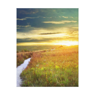 Fine Art Canvas Print - Konza Prairie