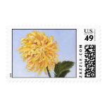 Fine Art & Nature Postage - Yellow Chrysanthemum