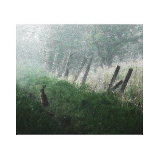 "Fine Art Photo Canvas ""The Hare I Saw in My Dream"" Canvas Prints"