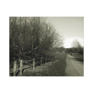 Fine Art Photograph Countryside road Canvas Print