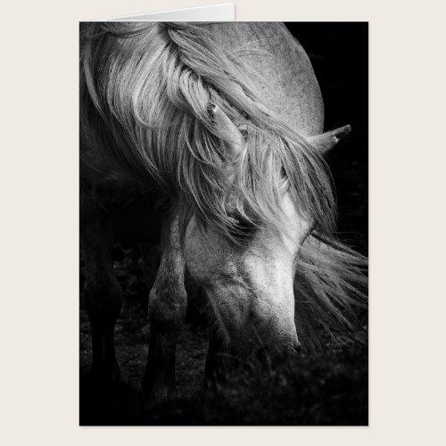 Fine Art Pony Head and Mane blank notelet / card