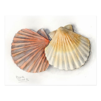 Fine Art Post Card - Sea Shells, Watercolour