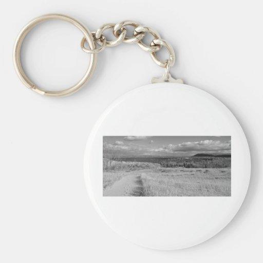 Fine Art Print Path through Sleeping Bear Dunes Key Chain