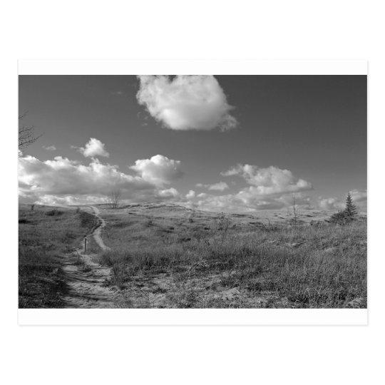 Fine Art Print Path through Sleeping Bear Dunes Postcard