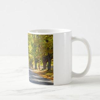 Fine Art Print Tunnel of Trees Classic White Coffee Mug