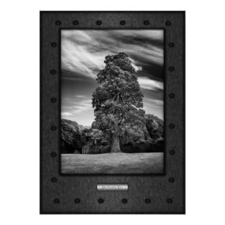Fine Art, The Reading Tree, faux riveted steel Poster