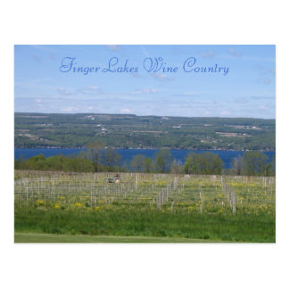 Finger Lakes Wine Country Post Cards