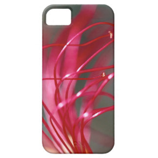 Fingers of a Flower iPhone SE/5/5s Case