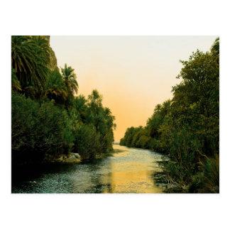 Finikodasos palm forest peace and calm postcard