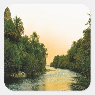 Finikodasos palm forest peace and calm square sticker