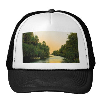 Finikodasos palm forest peace and calm trucker hat