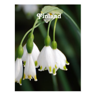 Finland Lily of the Valley Post Card