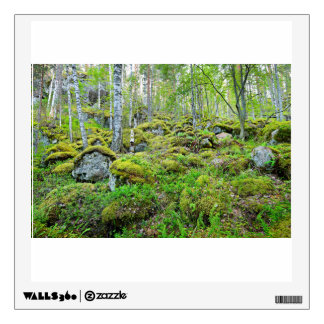 Finland'S Forest On Canyons And Granite Rocks Wall Decal