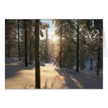 Finnisch Forest Cards