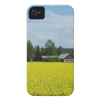 Finnish Countryside Blackberry Bold case