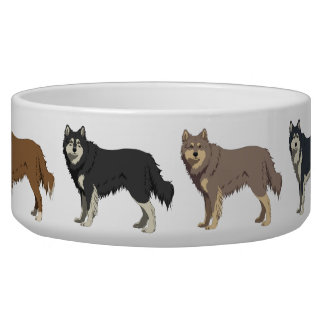 Finnish Lapphund colors dog bowl