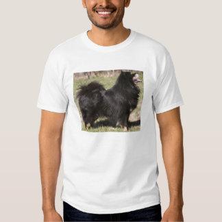 finnish lapphund full.png T-Shirt