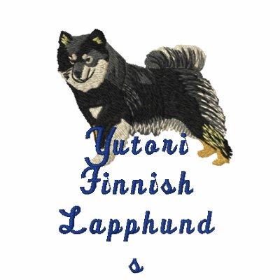 Finnish Lapphund  - Yutori