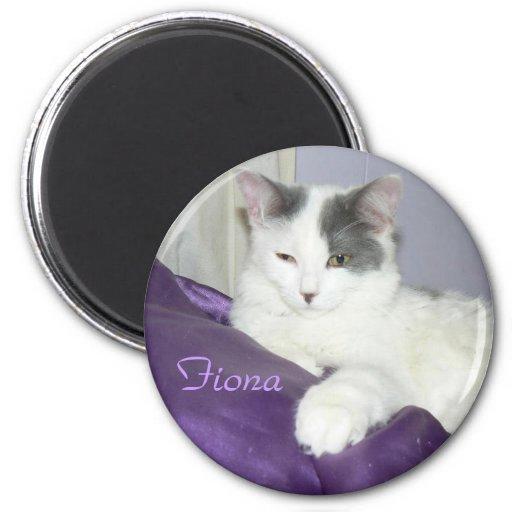 fiona circle magnet
