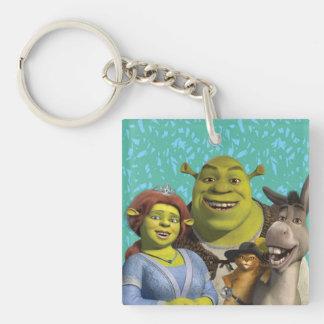Fiona, Shrek, Puss en botas, y burro Llavero Cuadrado Acrílico A Doble Cara