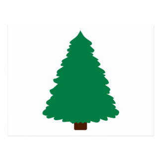 Fir christmas tree postcards