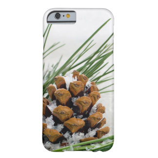 Fir Cone with Snow Flakes iPhone 6 Case