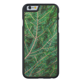 Fir tree branch carved® maple iPhone 6 slim case
