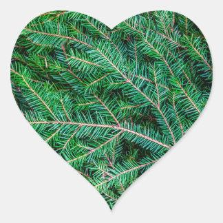 Fir tree branch heart sticker