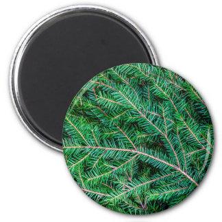 Fir tree branch magnets