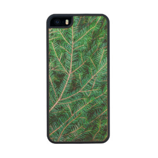 Fir tree branch wood iPhone SE/5/5s case