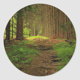 Fir Tree Path Classic Round Sticker