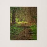 Fir Tree Path Jigsaw Puzzle