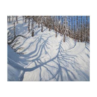 Fir Tree Shadows Tignes 2009 Canvas Print