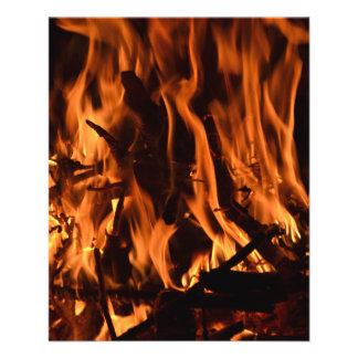 fire-432478 fire wood forest nature orange black b flyer