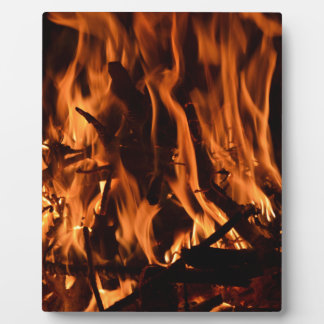 fire-432478 fire wood forest nature orange black b display plaques