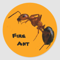Fire Ant Classic Round Sticker
