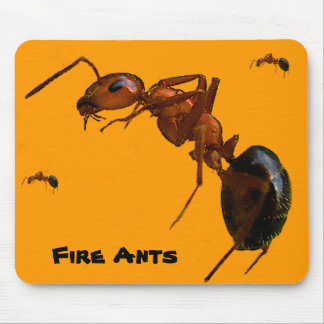 Fire Ants Mouse Pad