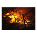 Fire behind Fence Photograph